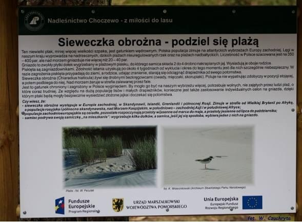 Fot. W. Czuchryta (BP WWF)